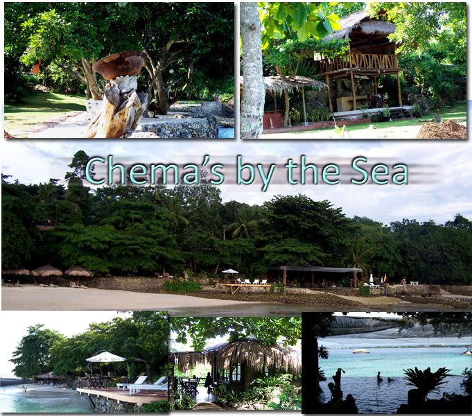 Coco Beach Resort Samal Contact Number